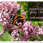 A Homeschooling Spring Clean