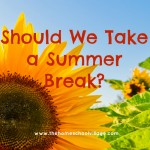 Should We Take a Summer Break?