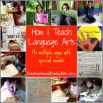 How I Teach Series… (to multiple ages with special needs)