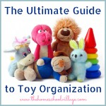 The Ultimate Guide to Toy Organization...for those moms tired of stepping on Legos in the middle of the night!!